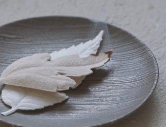葉っぱから柔らかな香りが漂う。和紙で作られた新しいお香「HA KO」