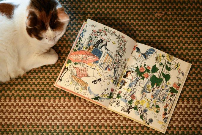 デザイナー・山岸彩さんの愛猫と絵本
