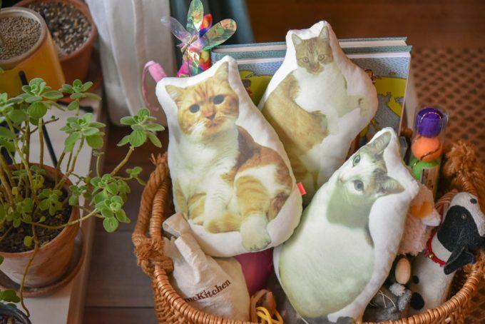 猫の写真入りのクッション