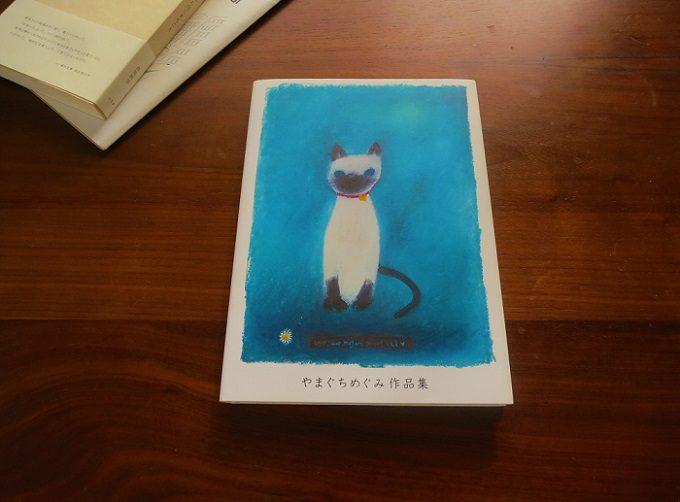 高円寺の本屋「Amleteron(アムレテロン)」おすすめの画集『やまぐちめぐみ作品集』