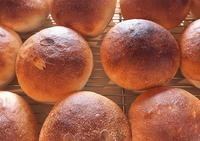 「新潟地粉パンの店 cosa」のグルテン控えめの丸パン