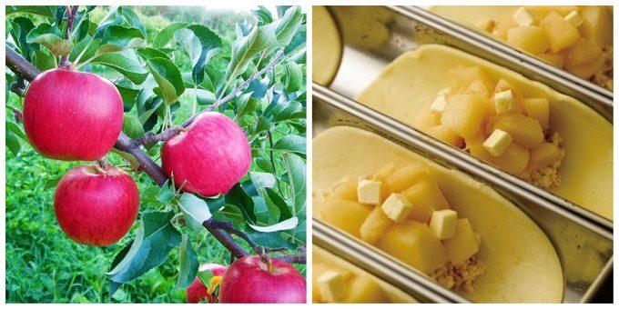 「きのとや」新千歳空港ファクトリー店限定のアップルパイに使われるりんごと、製造過程