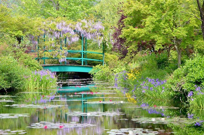 北川村『モネの庭』マルモッタンの「水の庭」2