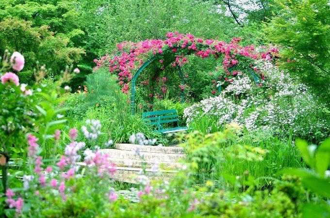 高知県北川村『モネの庭』マルモッタンのバラのアーチ