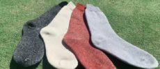 夏におすすめの蒸れない靴下「Ashitabi(あしたび)」