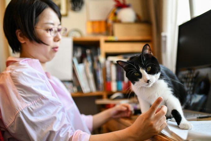 小説・深緑野分さんと愛猫