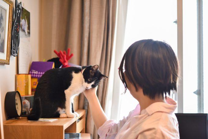 小説家・深緑野分さんと愛猫2