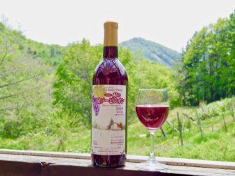 札幌ブランドのビオワイン。地域のワインと食文化を発信する「ばんけい峠のワイナリー」