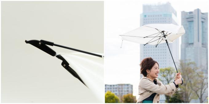 「長寿乃里」の「ポキッと折れるんです®」が強い風に吹かれているところ2