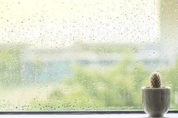 雨にぬれた窓ガラス