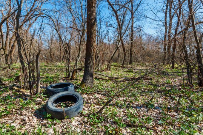 廃棄されたタイヤ