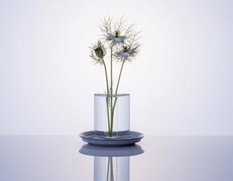 水の柱に浮かぶ植物。素材の美しさを最大限に引き出す花器「shallows」