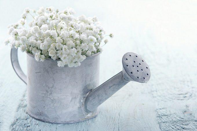 切り花長持ちさせる方法でかすみ草の花束を飾る様子