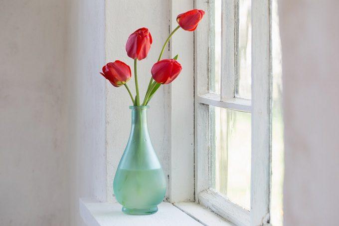 切り花を長持ちさせる方法で、チューリップの花を花瓶に飾る