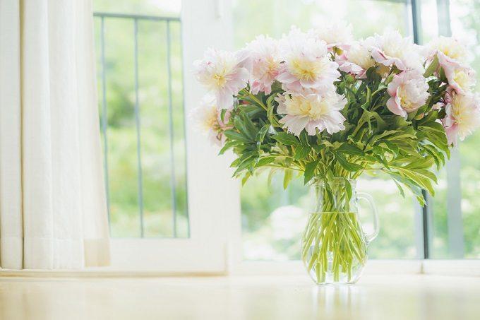 切り花を長持ちさせて、花を長く楽しんでいる様子