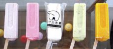 昔ながらの製法と懐かしい雰囲気にきっと夢中になる。「イグル氷菓」のアイスキャンディー
