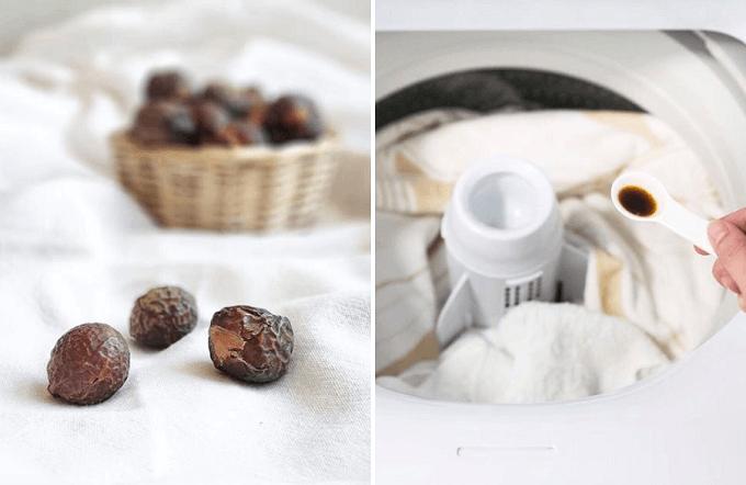 オーガニックな衣類用洗剤「HAPPI(ハッピー)」の原料「ソープナッツ」