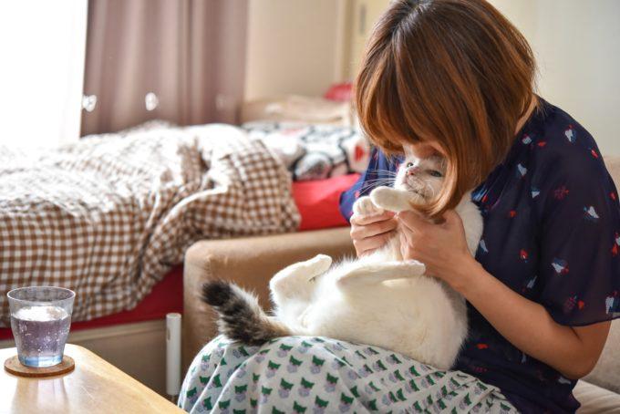 人形洋服作家・ナナノフさんと愛猫1