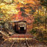 いつもとは違う目線で楽しむ。乗り物から眺める絶景紅葉...