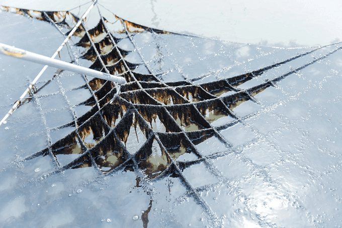 「初摘み海苔」の水揚げの様子