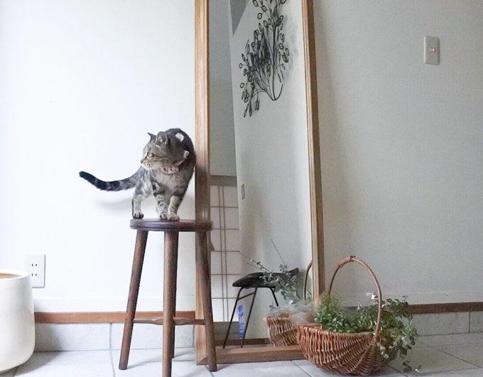 玄関をおしゃれに見せるアイテム:鏡