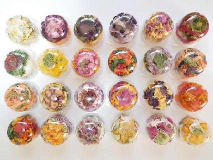 色々な種類のハナベジカップ入り写真