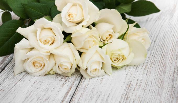 尊敬する男性へのプレゼントにもおすすめ。感謝の花言葉を持つ花「白いバラ」