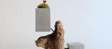 流木とセメントのバランスが絶妙。いつまでも眺めていられる「HITORI7」の花器
