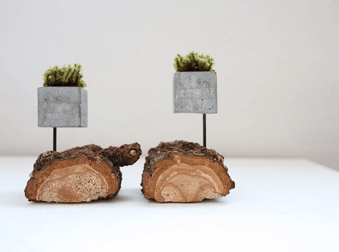 「HITORI7(ヒトリナナ)」の流木とセメントの花器2種類