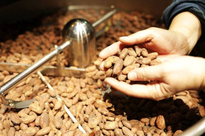 どんな人も安心して食べられる、ヴィーガンチョコレート「foo CHOCOLATERS」