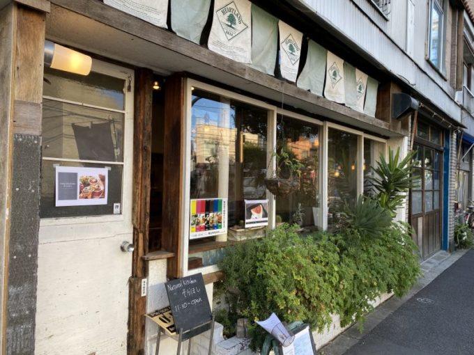 カメレオンのように顔が変わるカフェ。曳舟「爬虫類館分館」ってどんなところ?