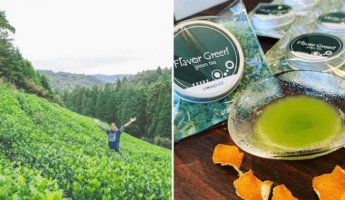 京都の茶畑と「Flavor Green(フレーバーグリーン)」のフレーバー茶