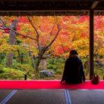 赤や黄色に染まる美しい光景に惚れ惚れ。本当は教えたく...