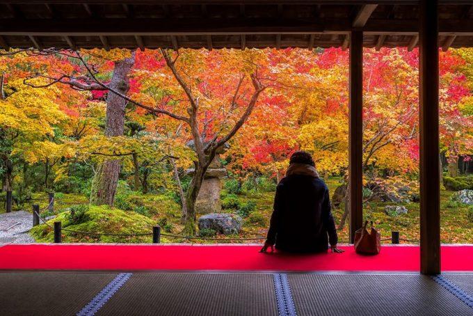誰にも教えたくない!訪れるべき京都の絶景紅葉スポット<5選>