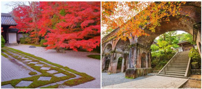 赤や黄色に染まる美しい光景に惚れ惚れ。本当は教えたくない、京都の紅葉絶景スポット<5選>