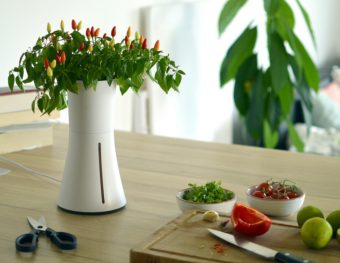 1ヵ月間水やりできなくても大丈夫。植物に自動で水やを与えてくれるスマートプランター