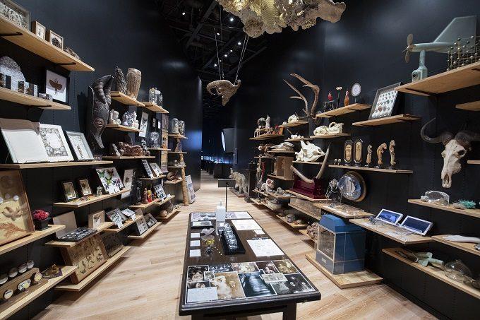 360度本棚が圧巻。図書・美術・博物がまぜまぜの「角川武蔵野ミュージアム」がオープン