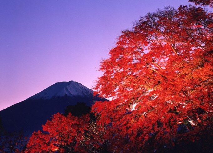 燃えるような真紅の絶景にうっとり。日帰り旅におすすめの紅葉スポット<関東3選>