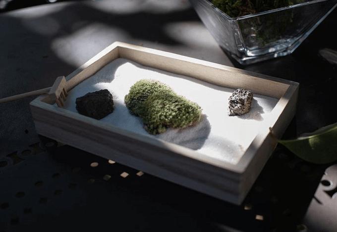 お部屋に日本庭園を。あなた好みの小さな世界が作れる苔インテリア「FUJIGOKE」