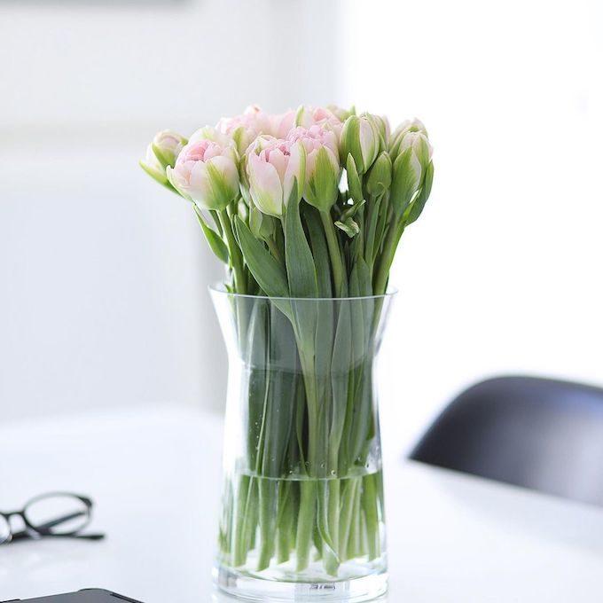少ない種類だからこそ美しい。フォトスタイリストに教わる「花のおしゃれな飾り方」4ポイント
