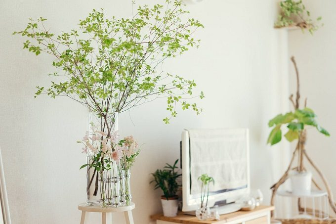「花」をテーマに春らしいインテリアへ。大人っぽくしあげるポイントは?