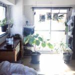 窓が1つでも快適に過ごせる。部屋を効率的に換気する方法...