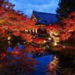 【関西・中国エリア】情緒溢れる秋旅におすすめ。今行き...