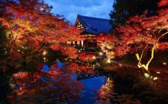 【関西・中国エリア】情緒溢れる秋旅におすすめ。今行きたい「紅葉名所」<5選>