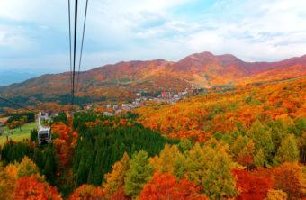 今が見頃の紅葉を満喫。この秋行きたい、大自然の中で楽しめる「全国秋の絶景スポット」5選
