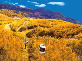 ここだけの絶景。一面に黄金色の紅葉が広がる「グランデコリゾート」へようこそ