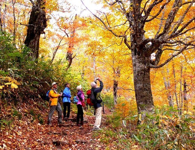 秋のお出かけにおすすめ、紅葉が絶景の福島県の裏磐梯の「グランデコリゾート」4